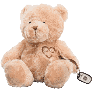 Front image of Memory Bear